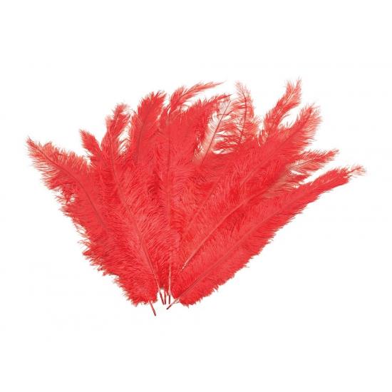 12 lange rode pluim veren