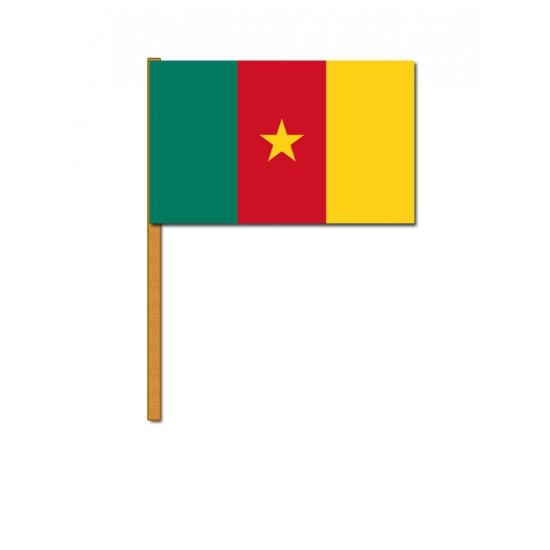 Handvlaggetje Kameroen