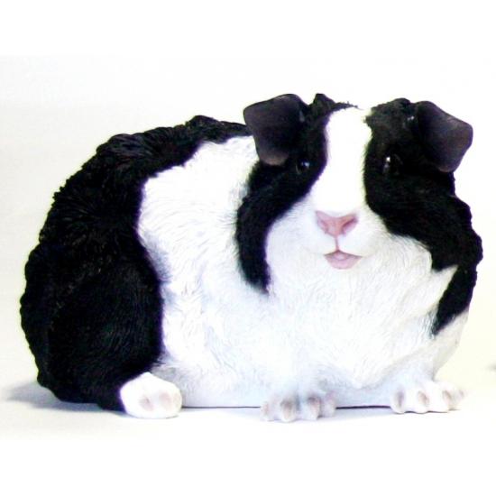 Polystone beeldje langharige zwarte cavia