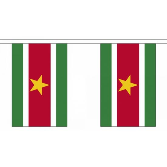 Rechthoekige vlaggenlijn Suriname