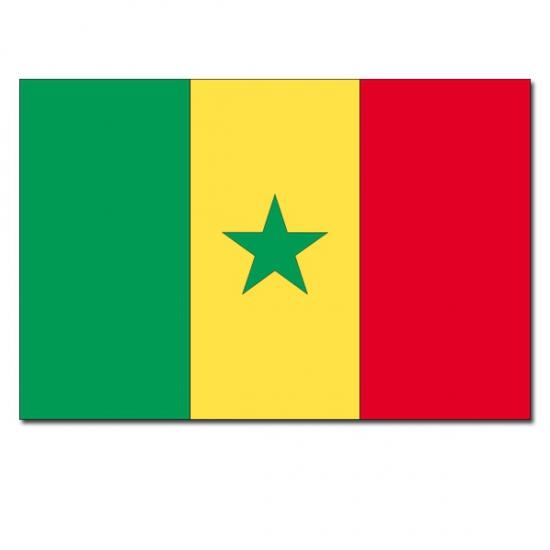 Senegalese landenvlag 90 x 150 cm