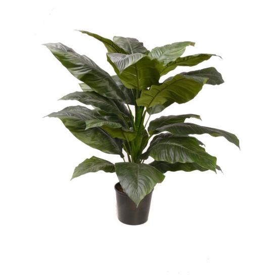 Spathiphyllum nep plant met 18 bladeren FopartikelenWinkel