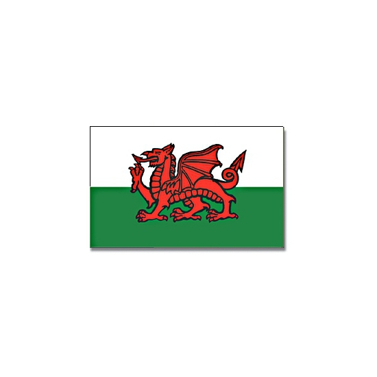 Vlag Wales met ringen 90 x 150 cm