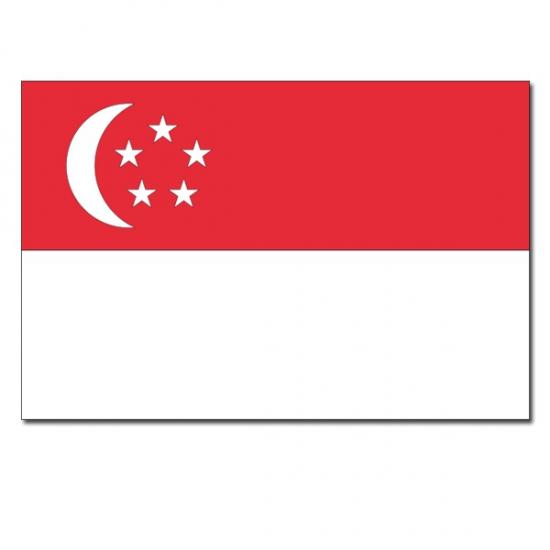Vlaggen Singapore