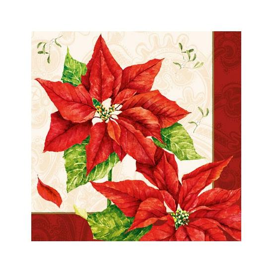 Kerststerren thema servetten 20 stuks. papieren servetten bedrukt met plaatjes van kerstbloemen. de servetten ...