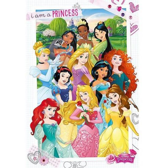 Kinderkamer decoratie poster prinsessen