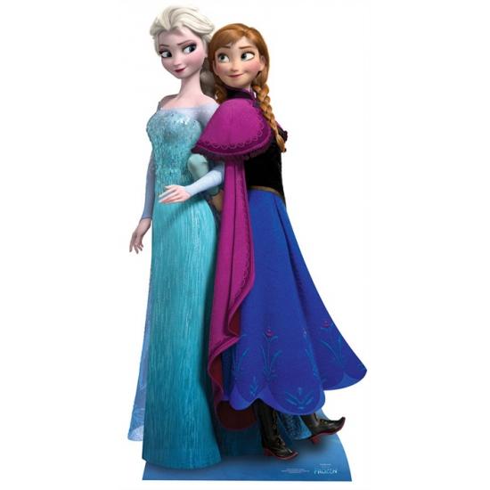 Foto bord van een Frozen Anna en Elsa